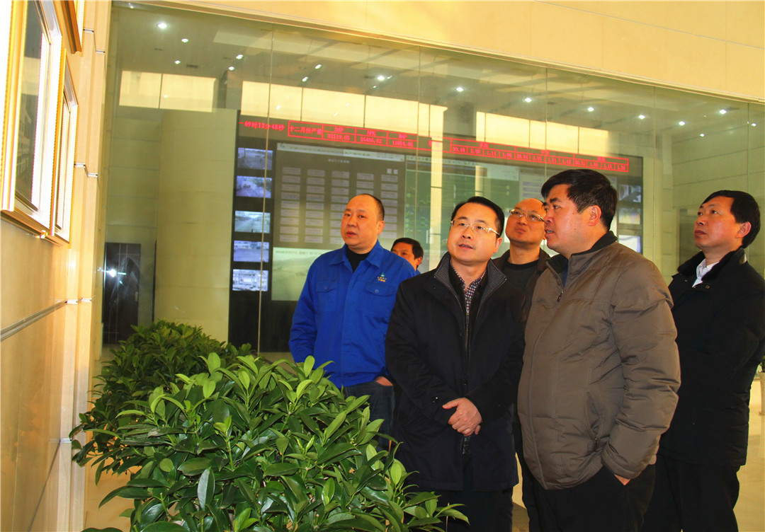 当阳市市委副书记、市长张世敏,市委副书记叶永清等领导参观考察六国化工总部